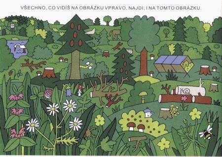 Hledej v lese